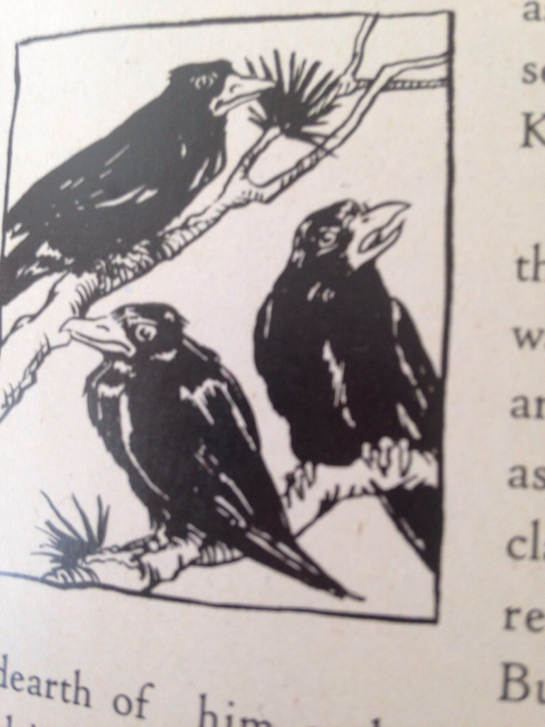 Some of crows and ravens roles in fairy tales and myth and 20140228 142601g buycottarizona