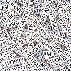 stock-photo-16704210-jumbled-words-emotions