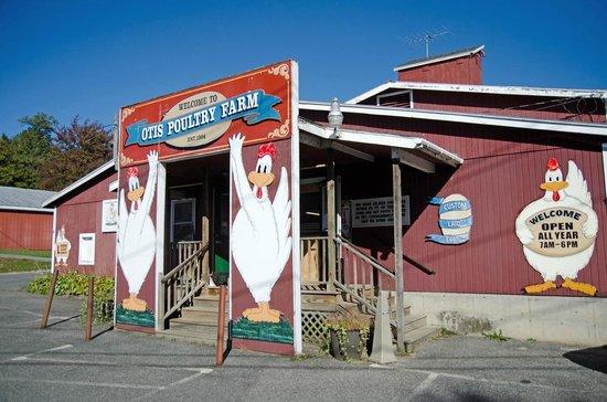 otis-poultry-farm