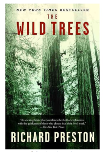 2018-04-04 12_14_39-The Wild Trees_ A Story of Passion and Daring _ Staples