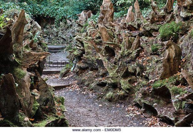 6dfcae3cd24c164cc294da9cc2c15a20--woodland-garden-the-victorian